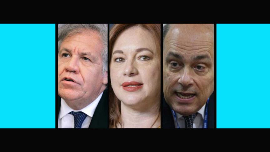 La OEA queviene