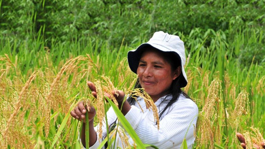 Sin agricultura familiar no sobreviviremos a ningunapandemia