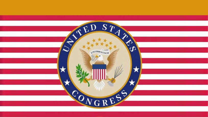 Congreso confirmará en enero nuevo presidente de EstadosUnidos